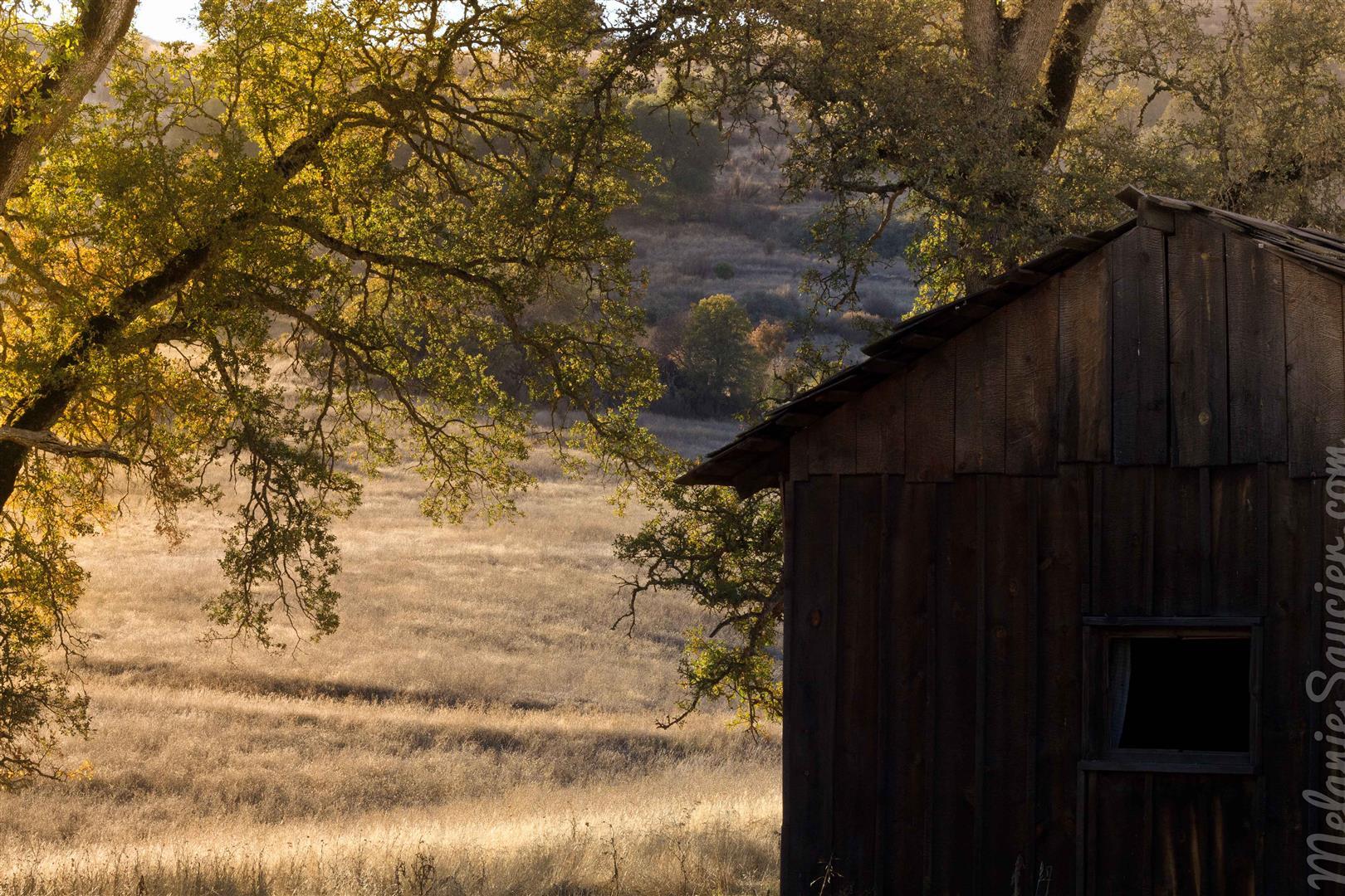 Cronan Ranch-13 (Large).jpg