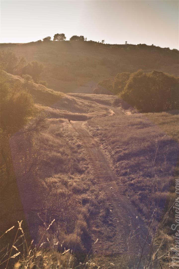 Cronan Ranch-24 (Large).jpg