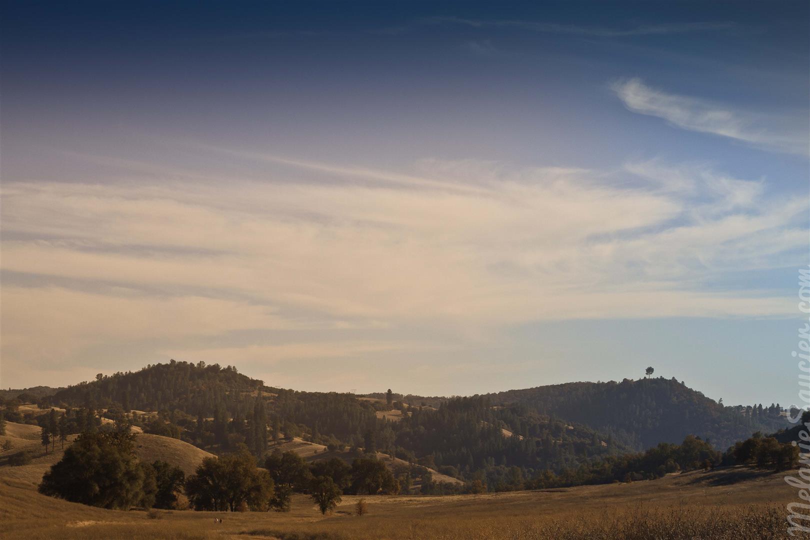 Cronan Ranch-6 (Large).jpg