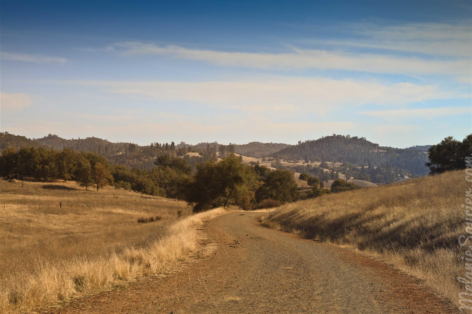 Cronan Ranch-4 (Large).jpg