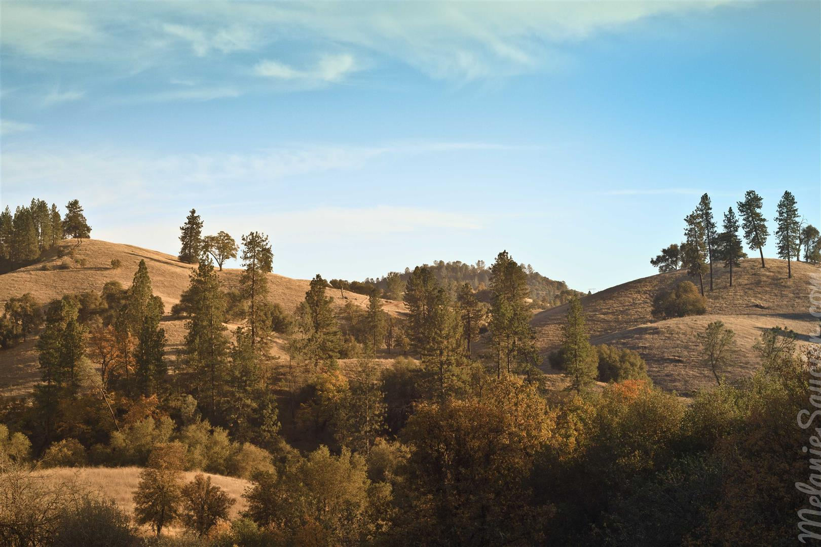 Cronan Ranch-21 (Large).jpg
