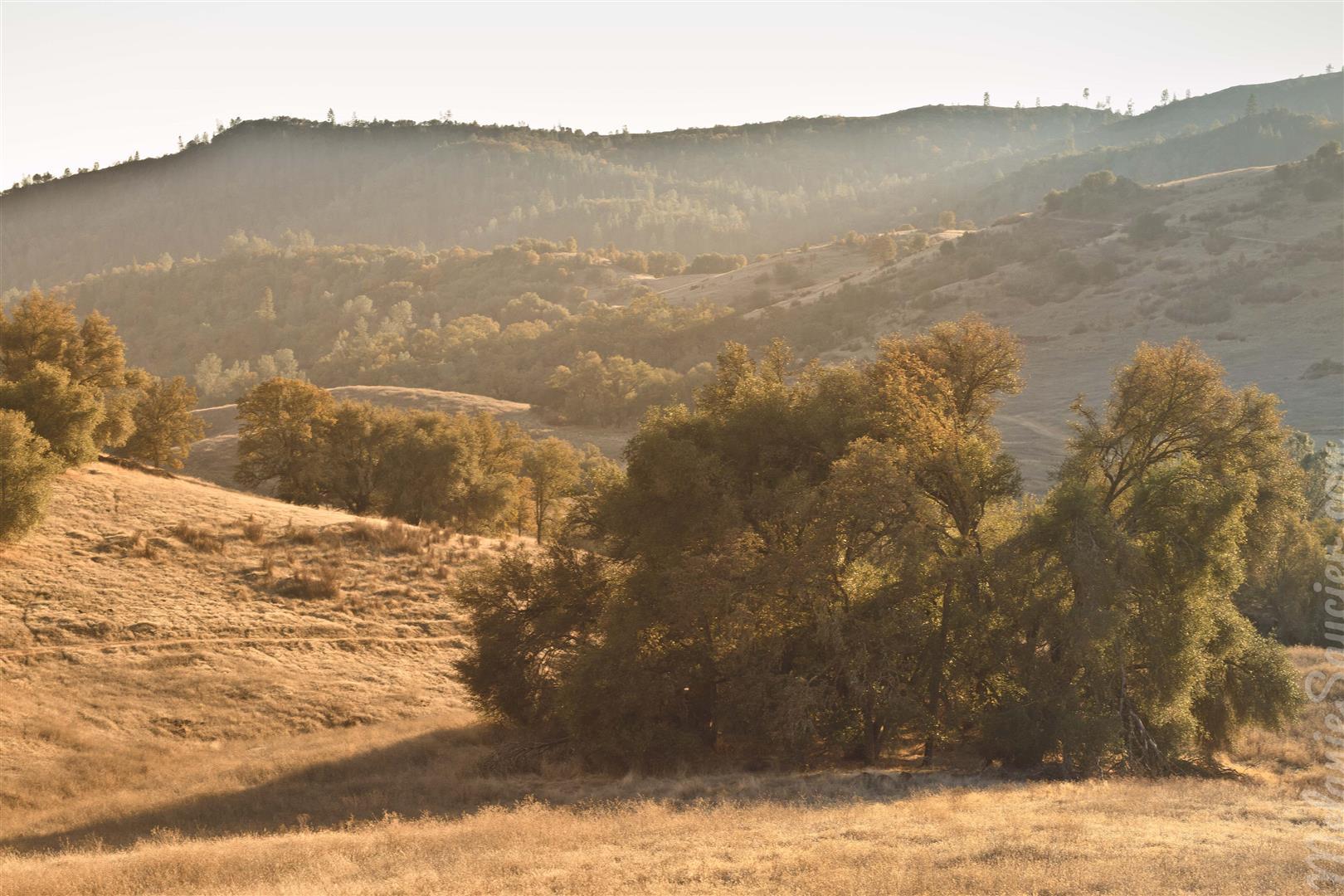 Cronan Ranch-26 (Large).jpg