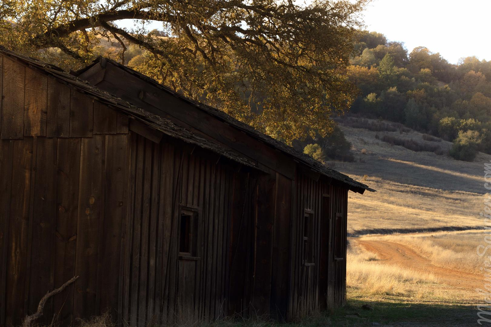 Cronan Ranch-14 (Large).jpg