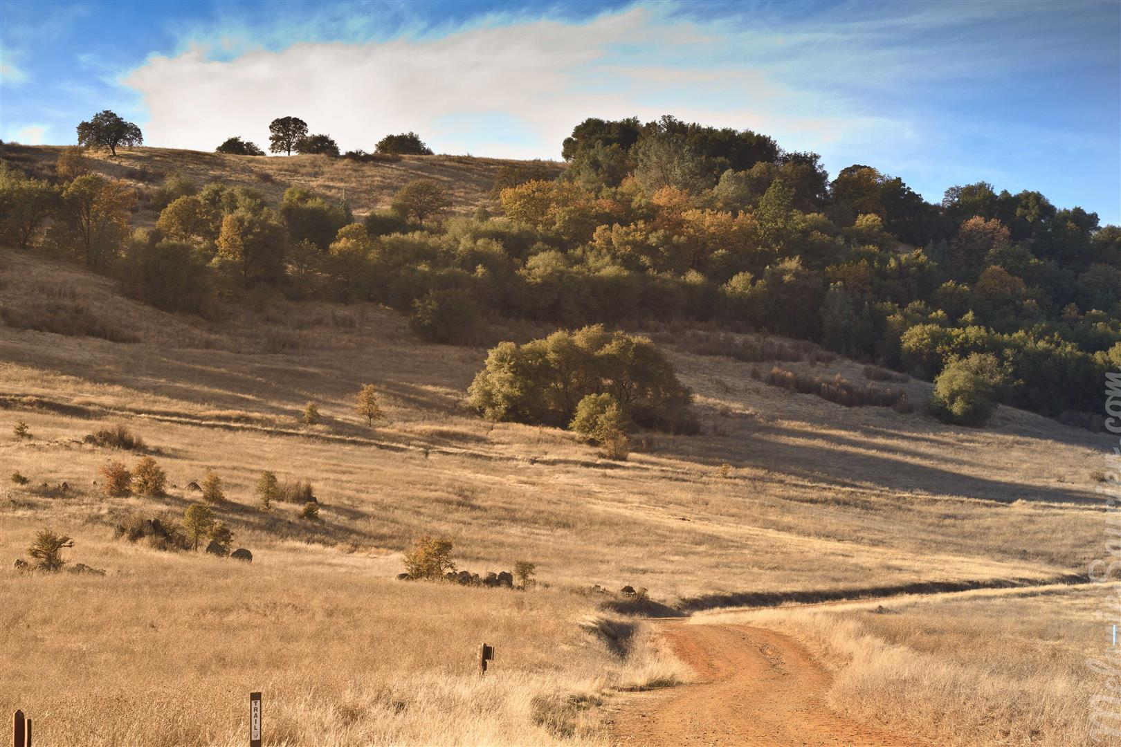 Cronan Ranch-7 (Large).jpg