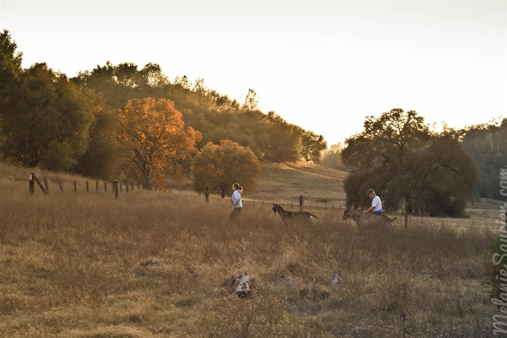 Magnolia Ranch Trail-14 (Large).jpg