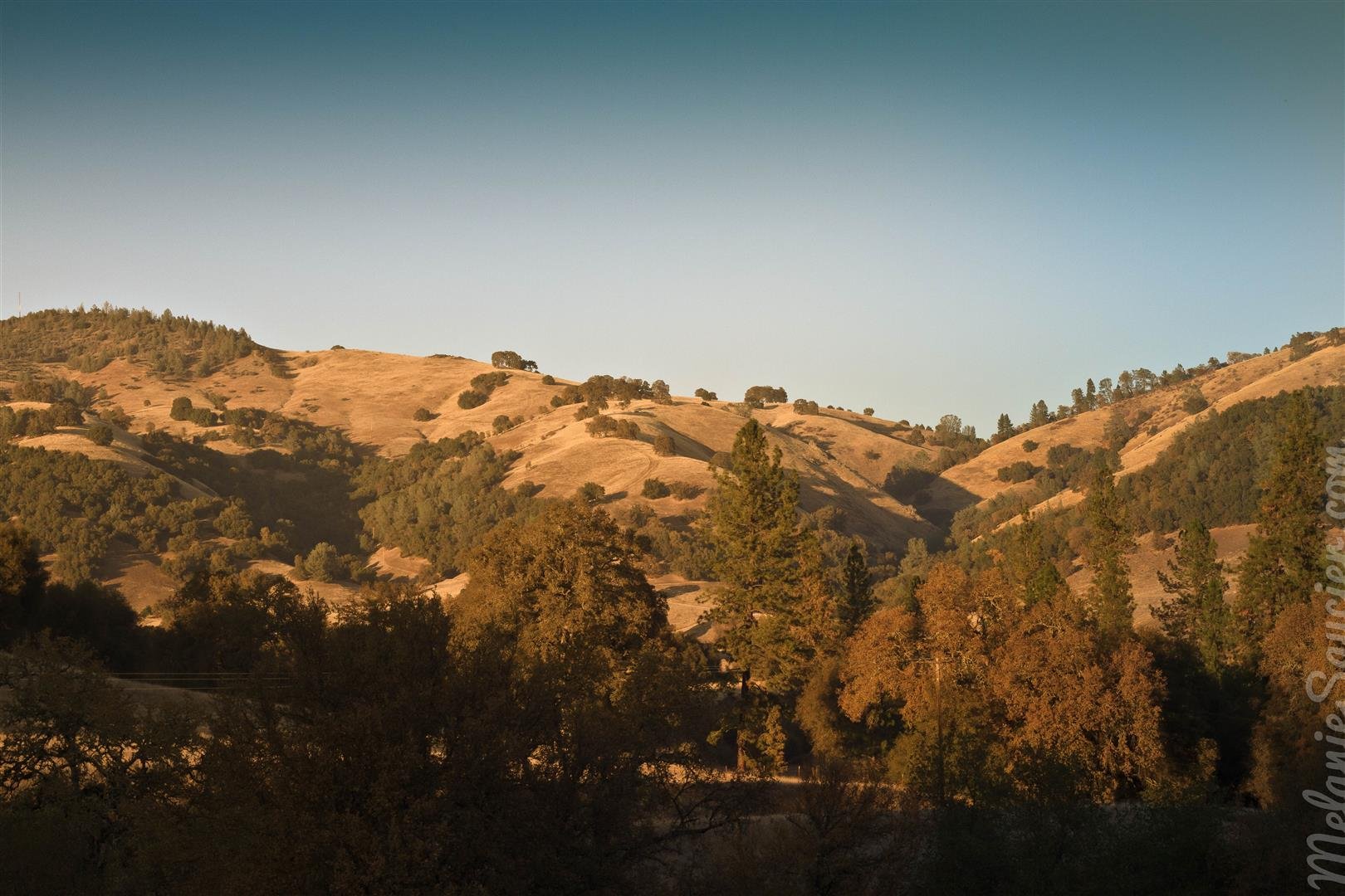 Magnolia Ranch Trail-12 (Large).jpg