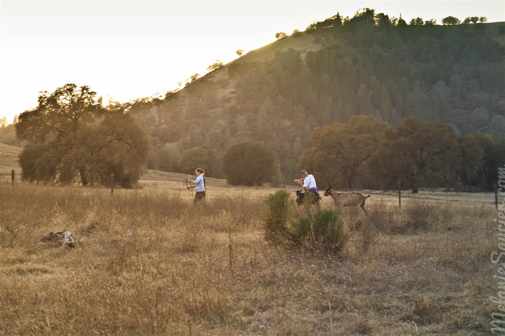 Magnolia Ranch Trail-13 (Large).jpg