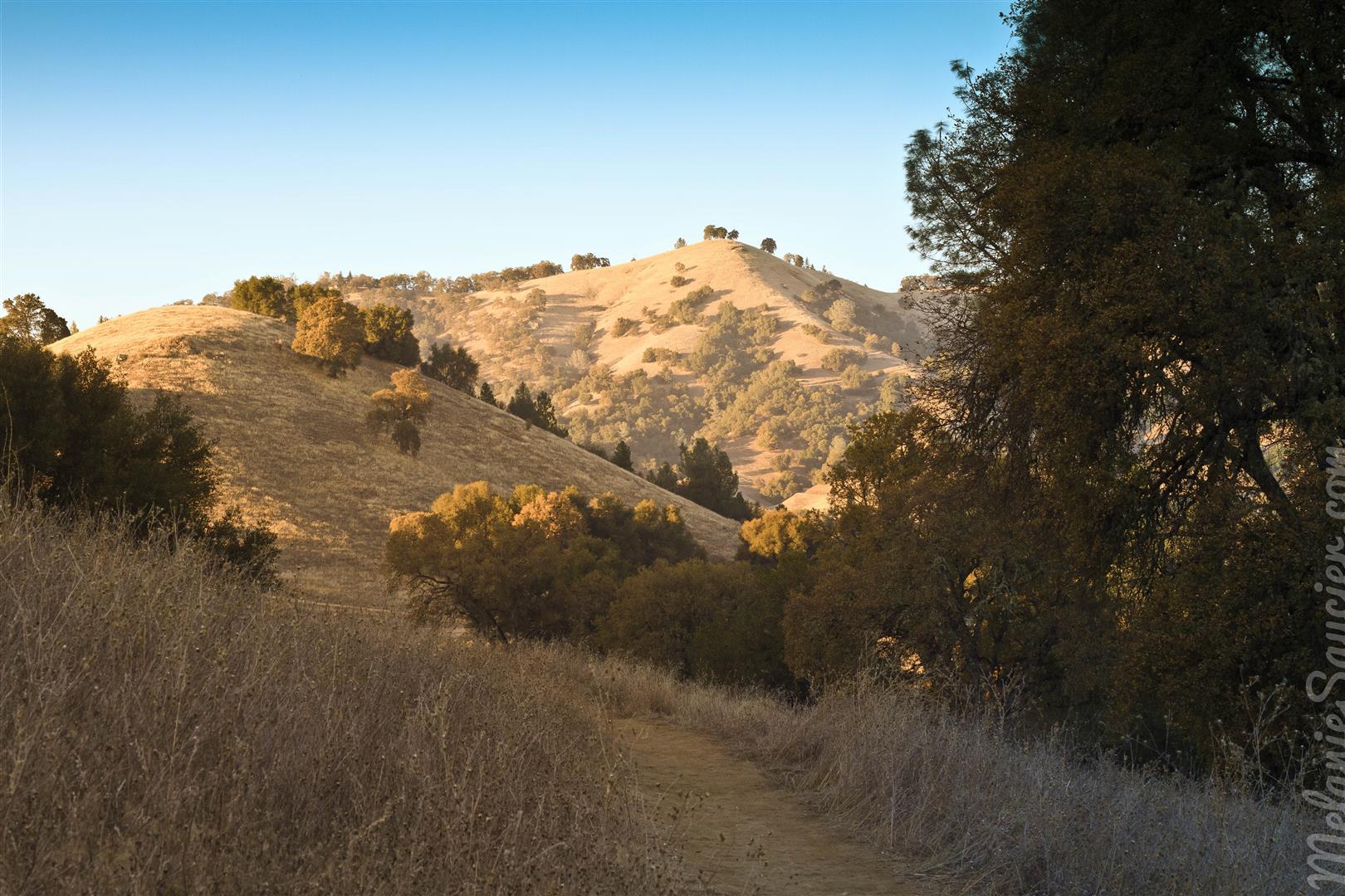 Magnolia Ranch Trail-11 (Large).jpg
