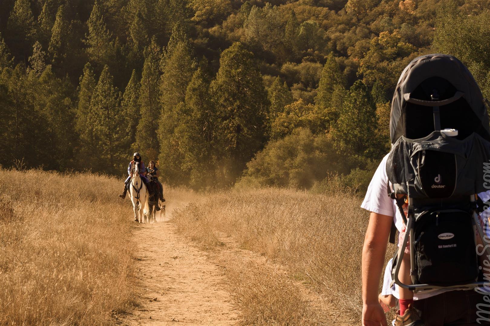 Magnolia Ranch Trail-2 (Large).jpg