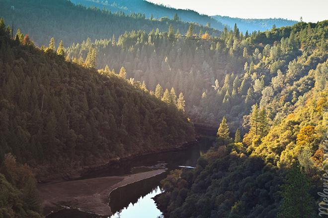Deer_View_California-31.jpg