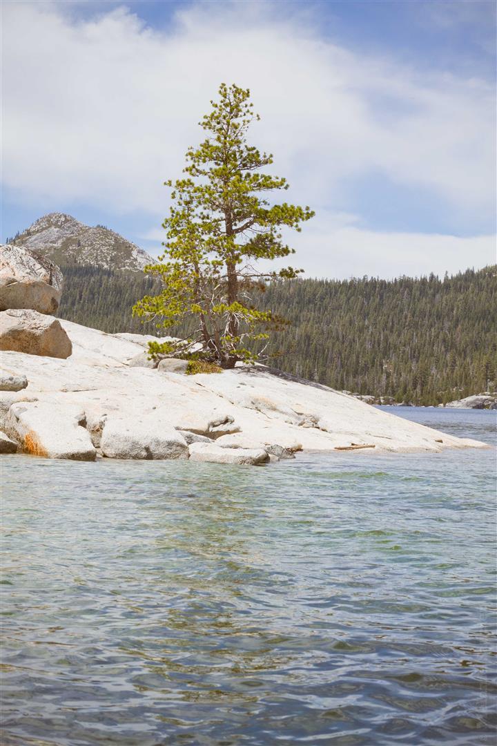 Loon Lake-18 (Large).jpg
