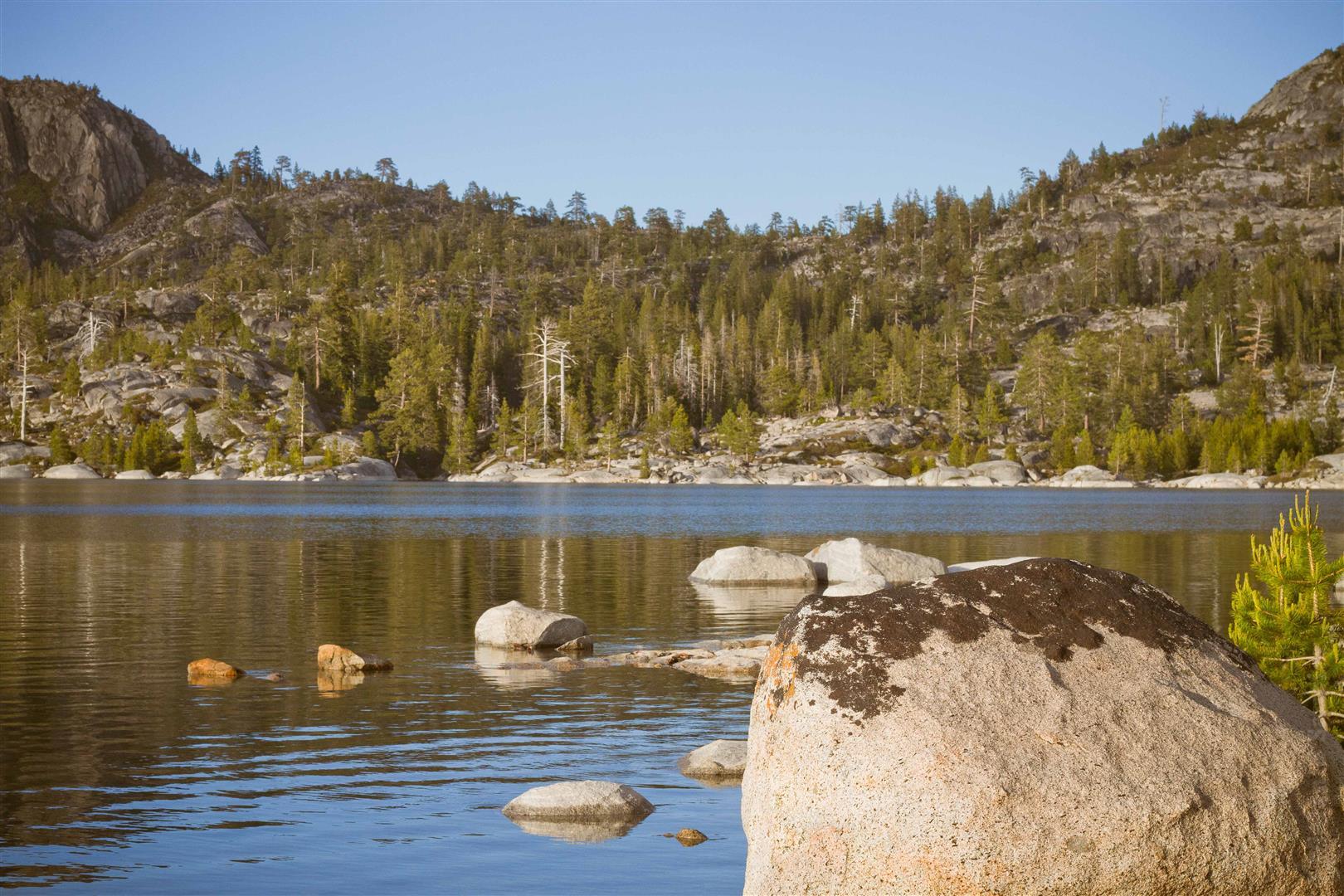 Loon Lake-27 (Large).jpg