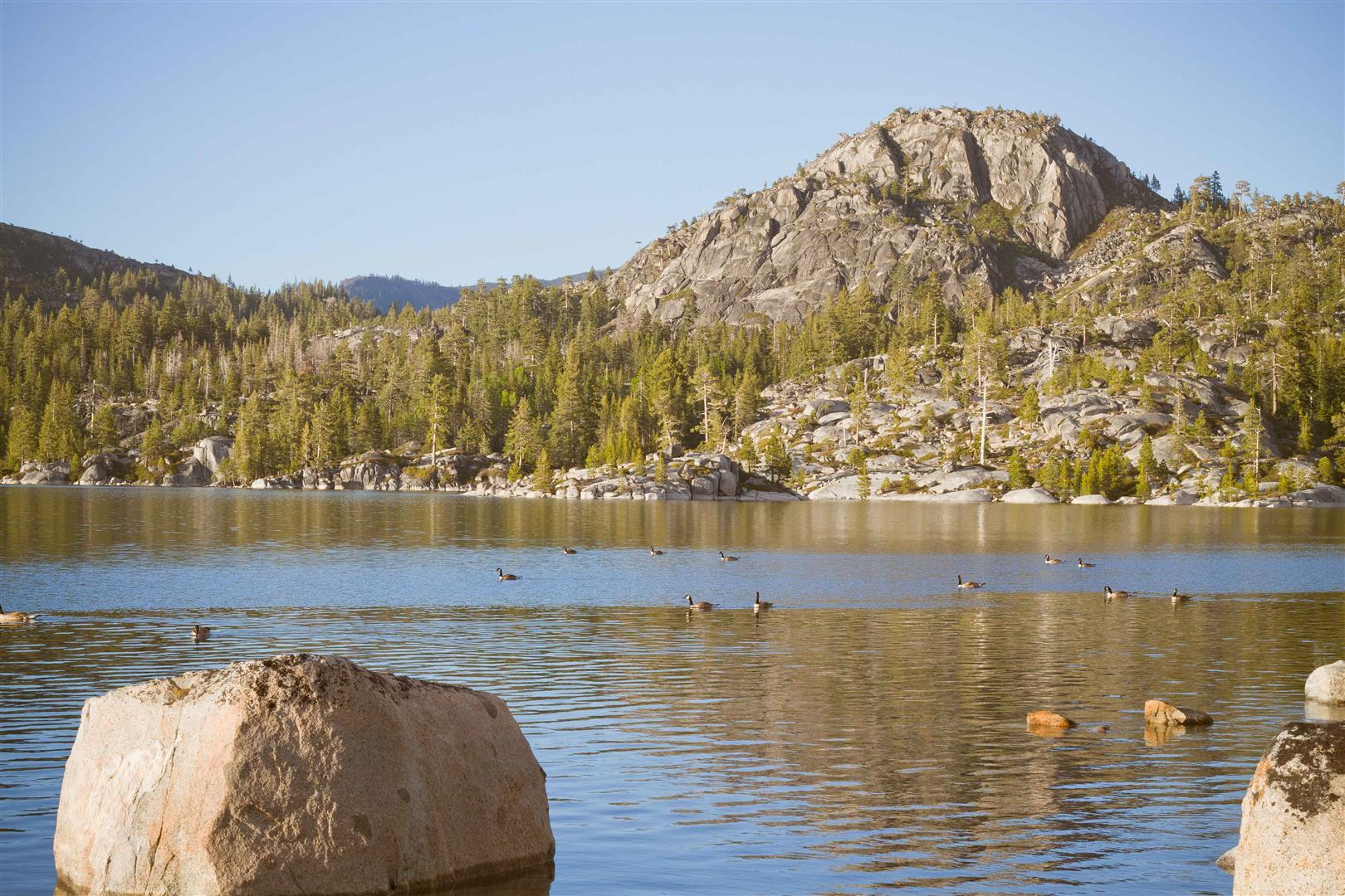 Loon Lake-31 (Large).jpg