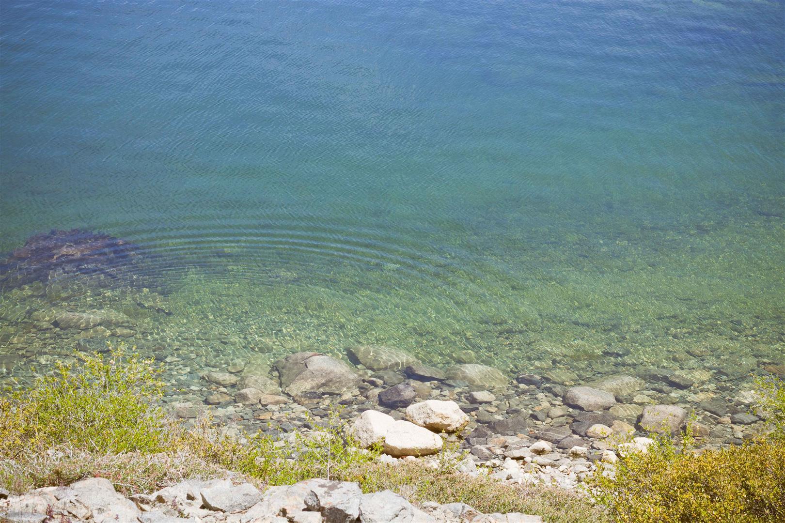 Loon Lake-13 (Large).jpg