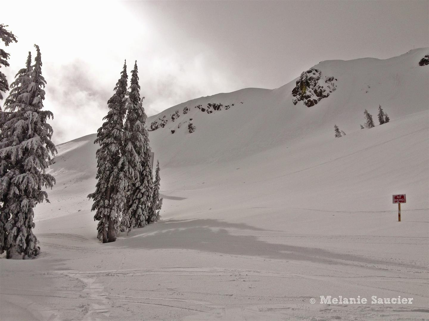 Squaw Valley-8 (Large).jpg