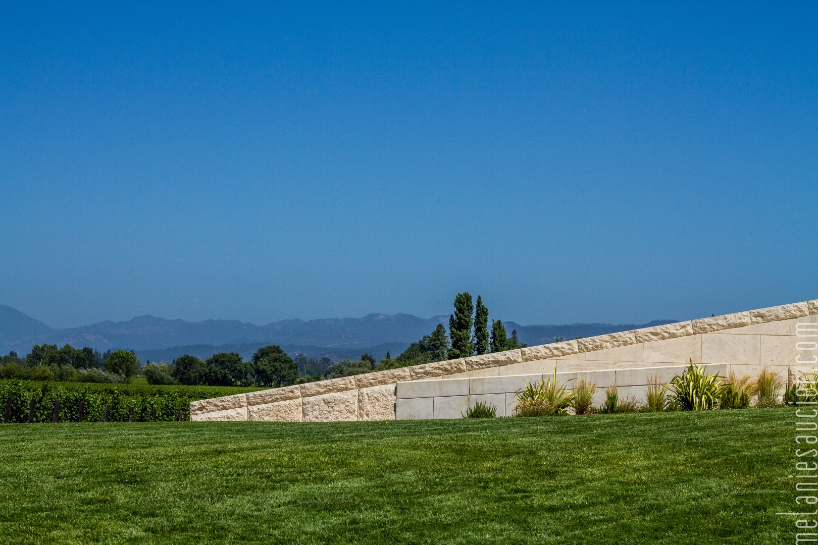 OpusOne_Winery-5 (Large).jpg