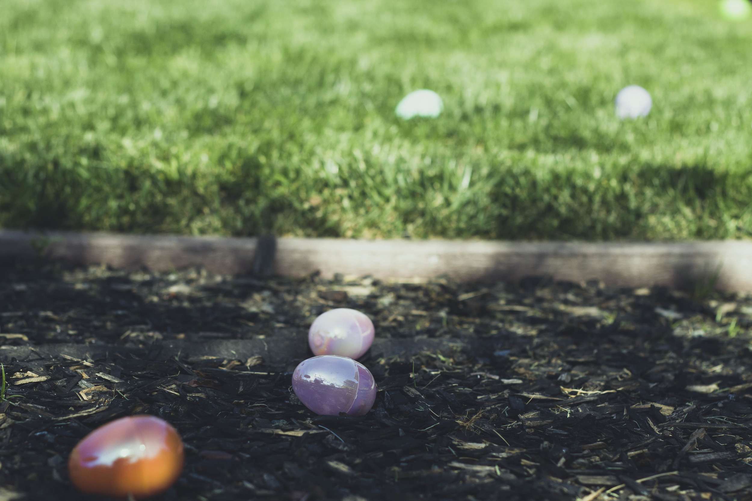 2014 Easter_Egg_Hunt (83).jpg