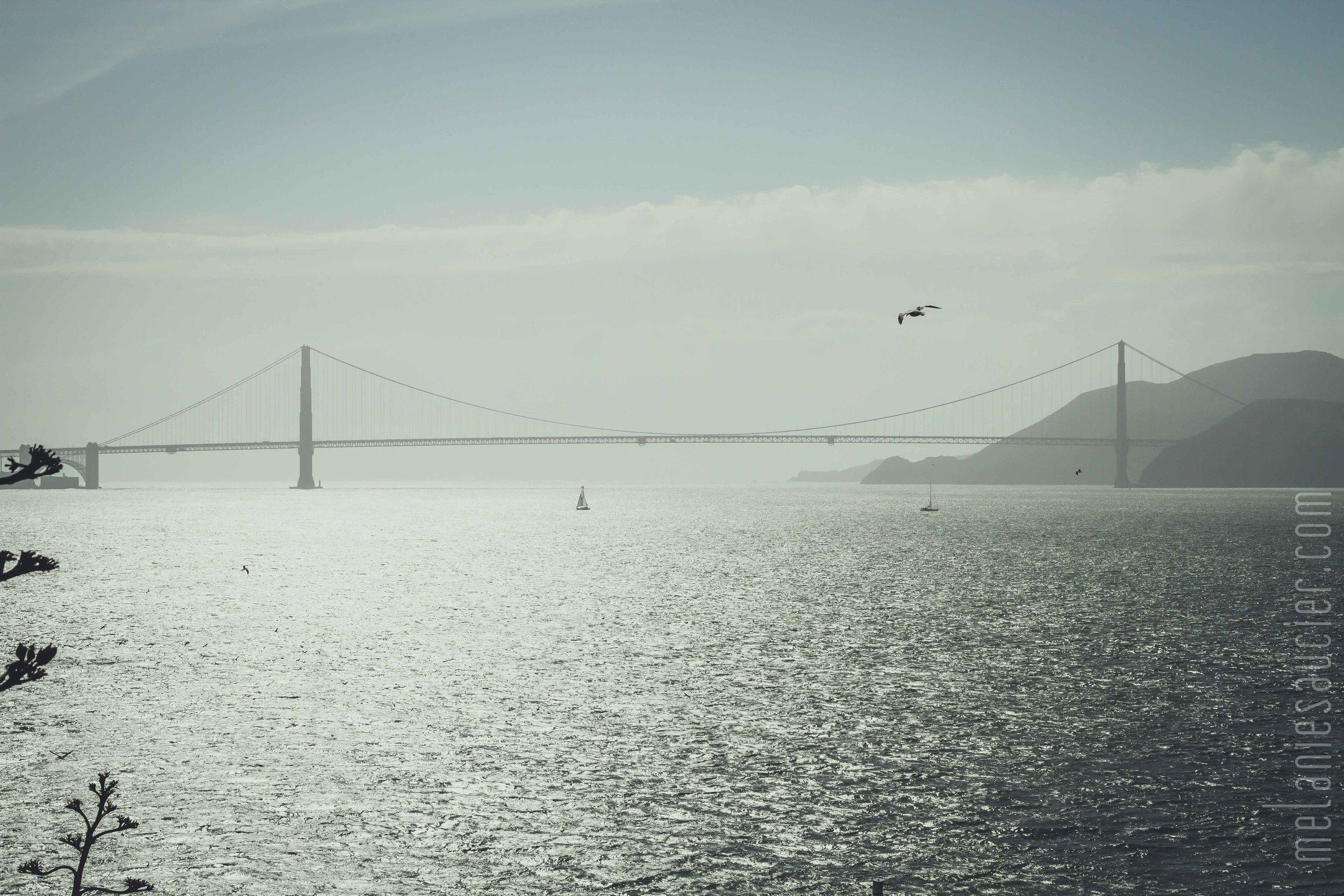 Alcatraz-38.jpg