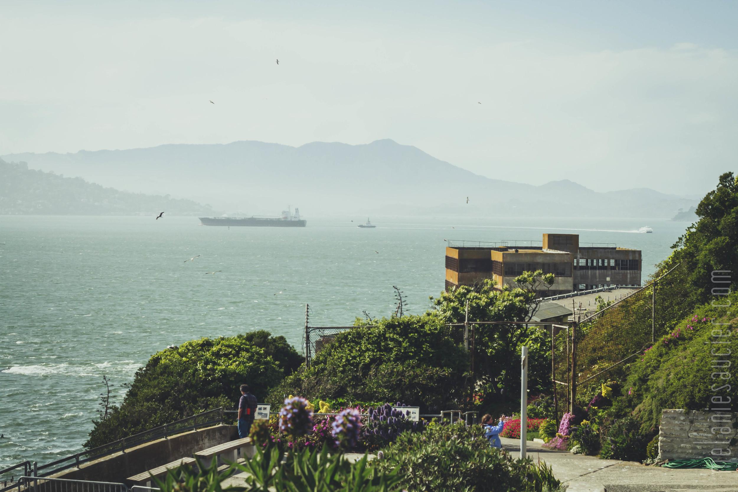 Alcatraz-50.jpg