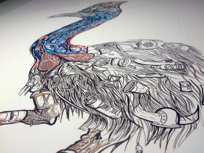 cassowary-coloured-illustration-designer-poster-drawing-bird-ud3-sam-shennan-sydney-illustrator-artist