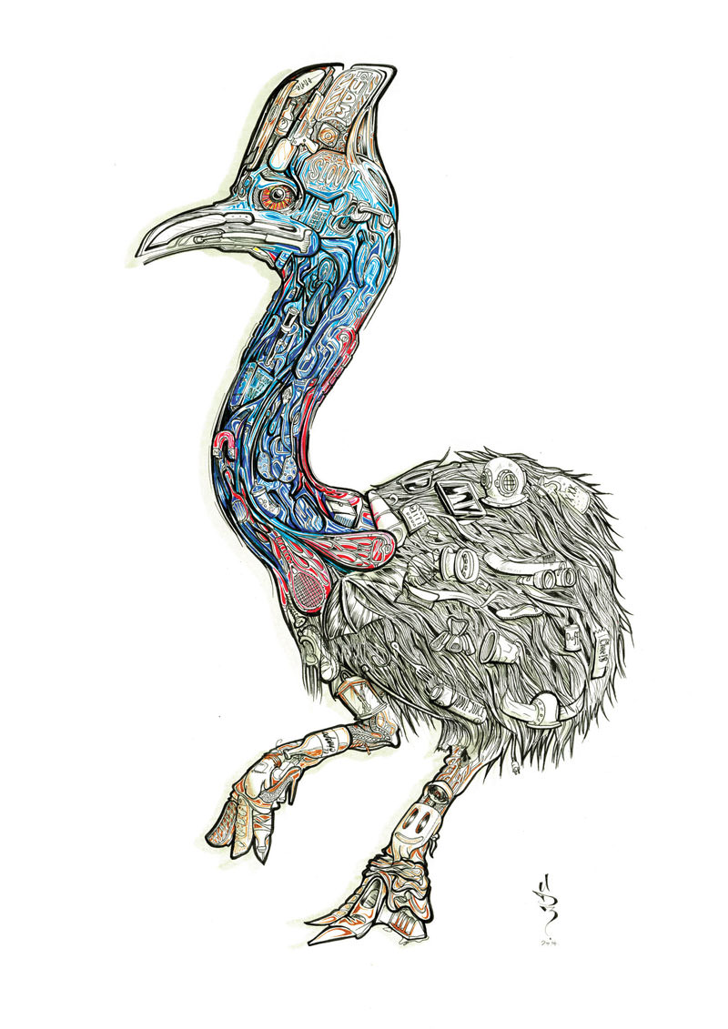 cassowary-treasure-island-sam-shennan-ud3-artist-sydney-illustrator-illustration-design-hunt-0.jpg
