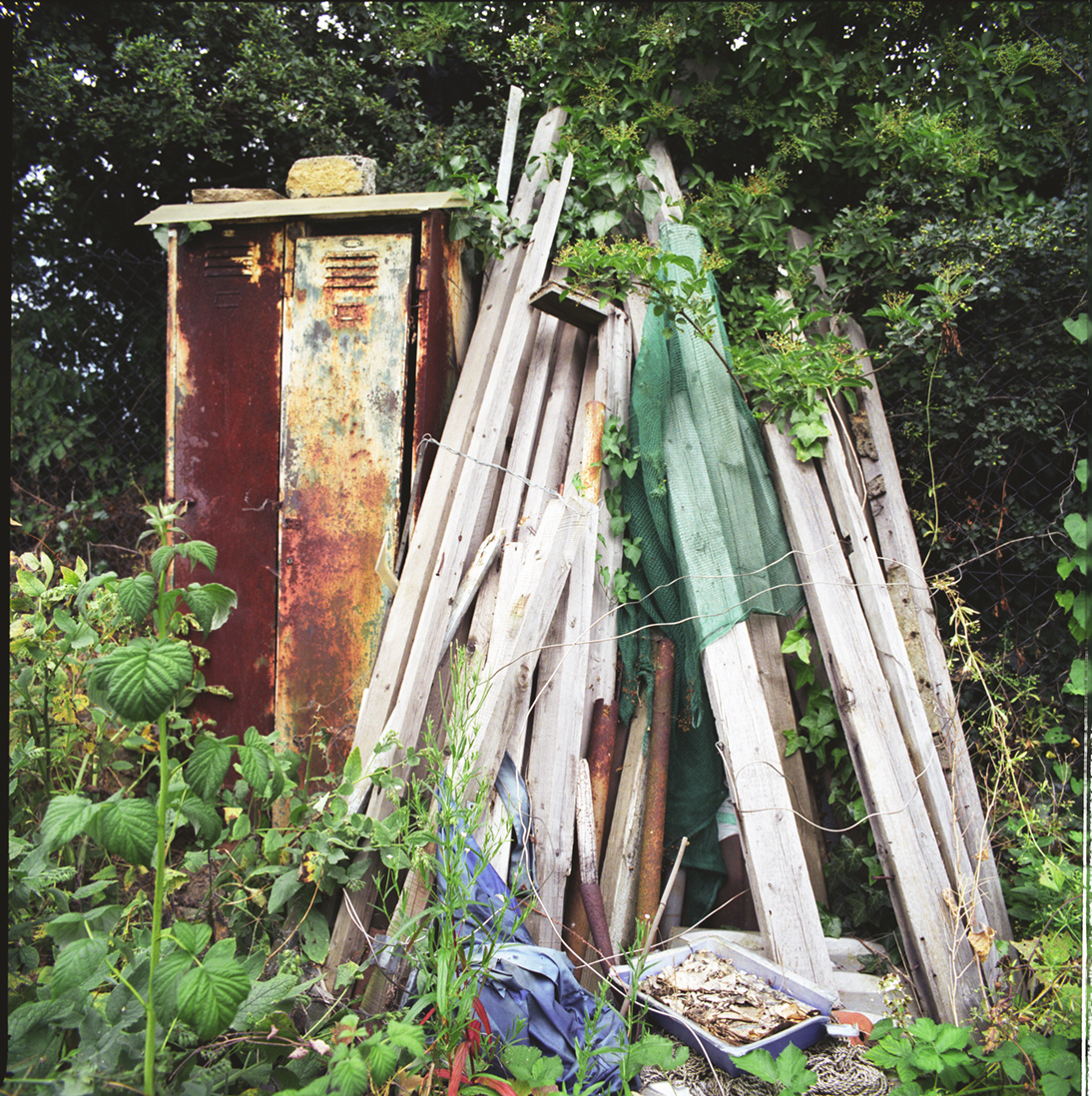 London_Portrait_Photographer_Inner_City_Landscapes_allotment+sculpture+1-3.jpg