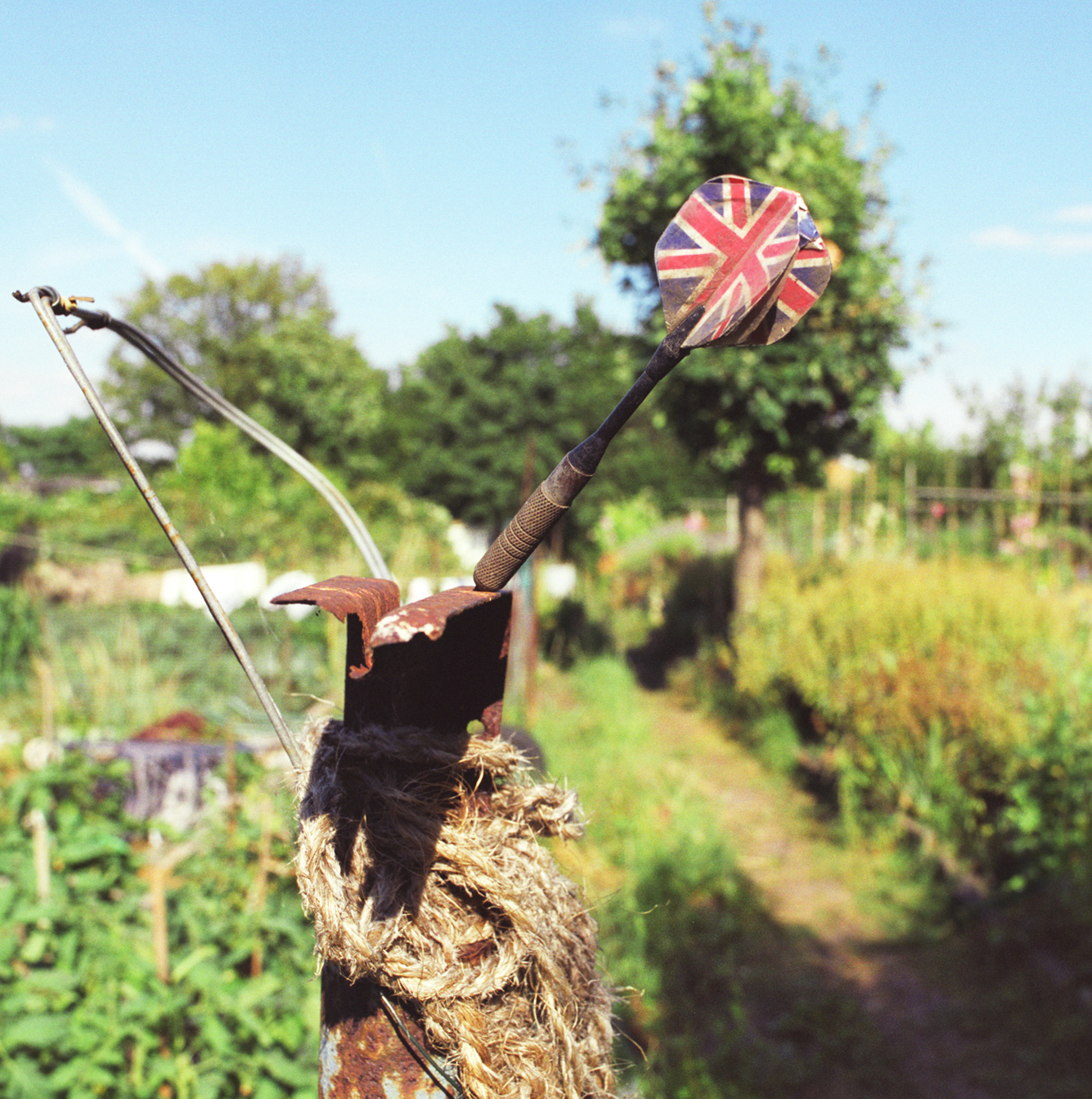 London_Portrait_Photographer_Inner_City_Landscapes_allotment+sculpture+1-4.jpg