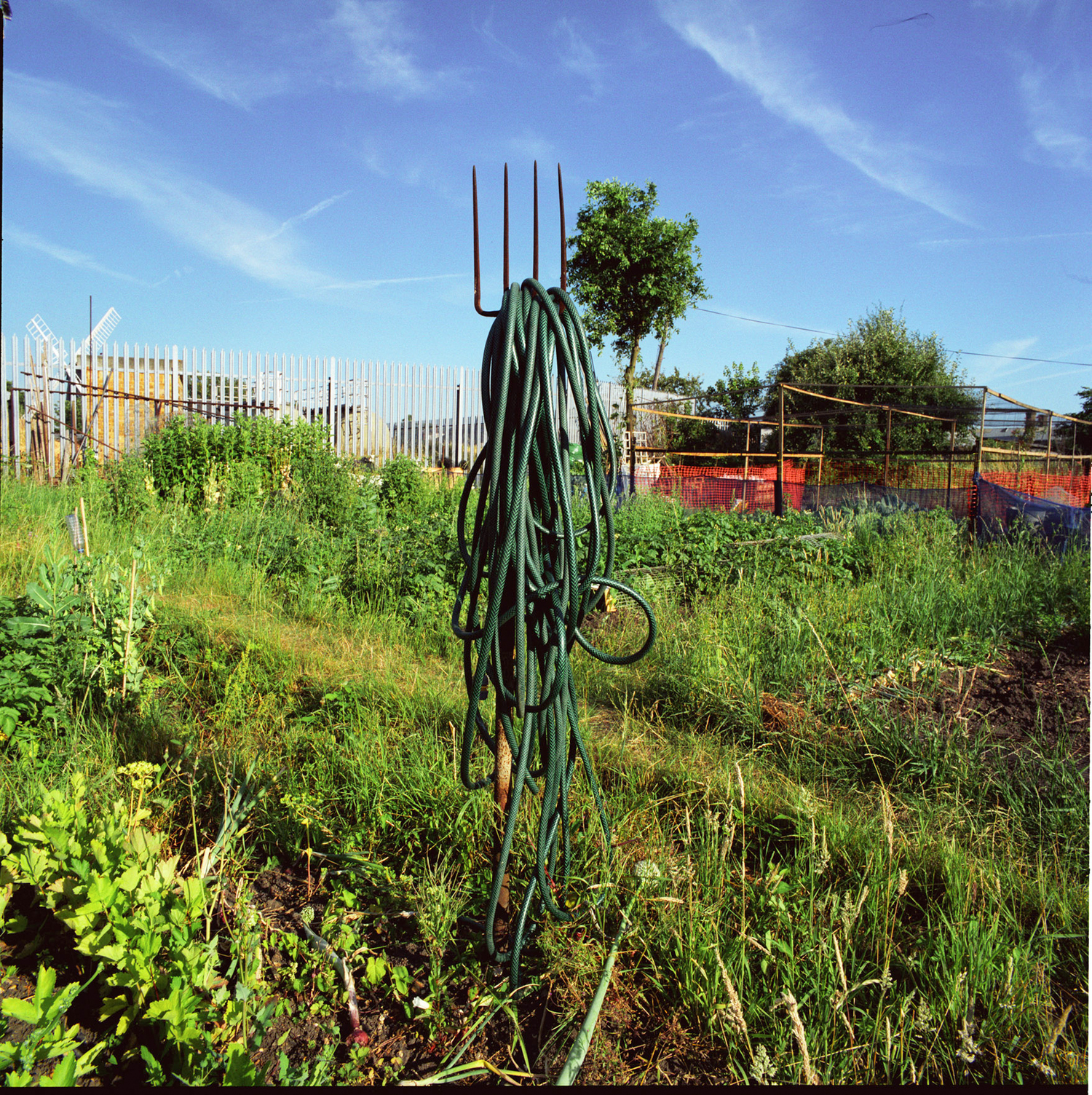 London_Portrait_Photographer_Inner_City_Landscapes_allotment+sculpture+1-2.jpg