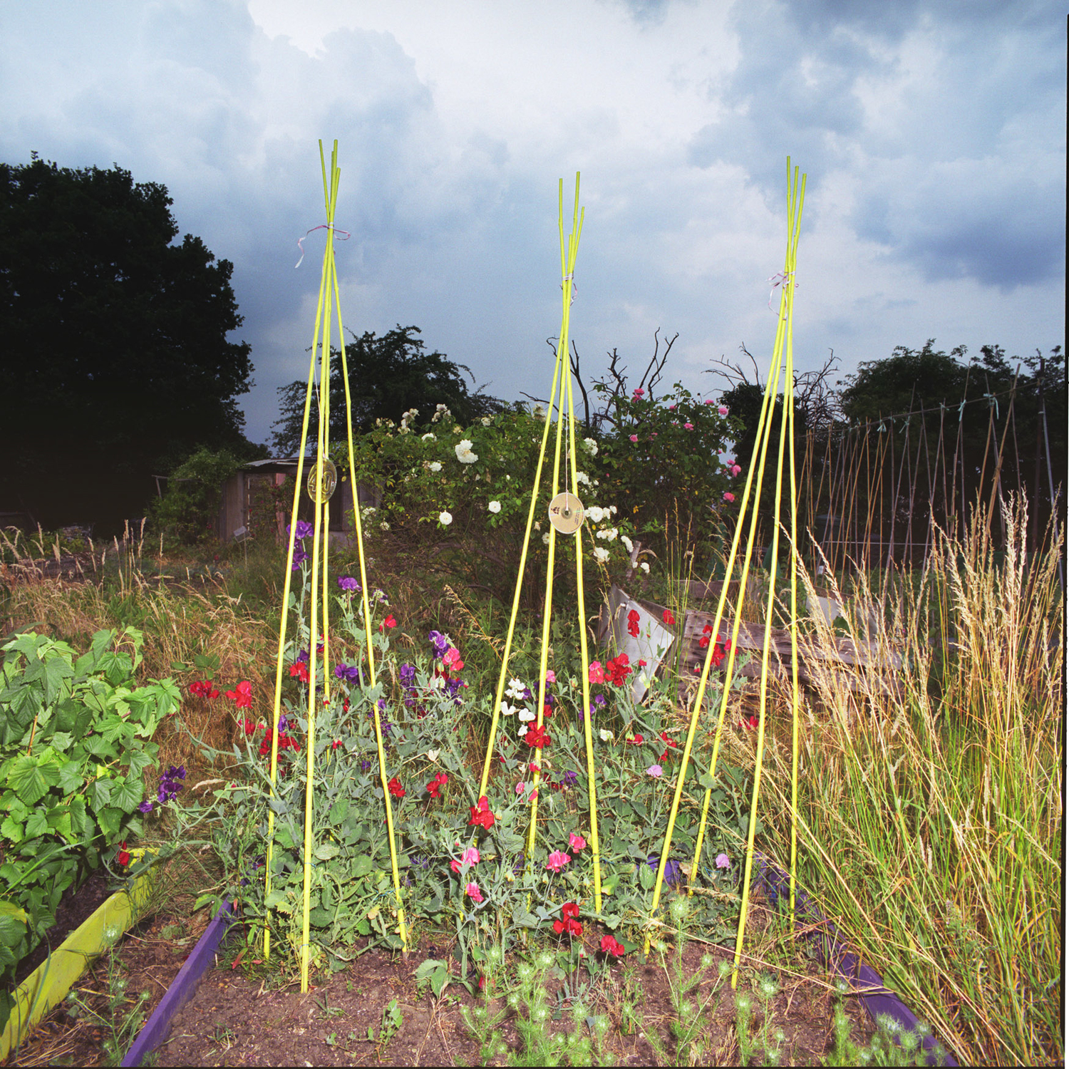 London_Portrait_Photographer_Inner_City_Landscapes_allotment+sculpture+1-5.jpg