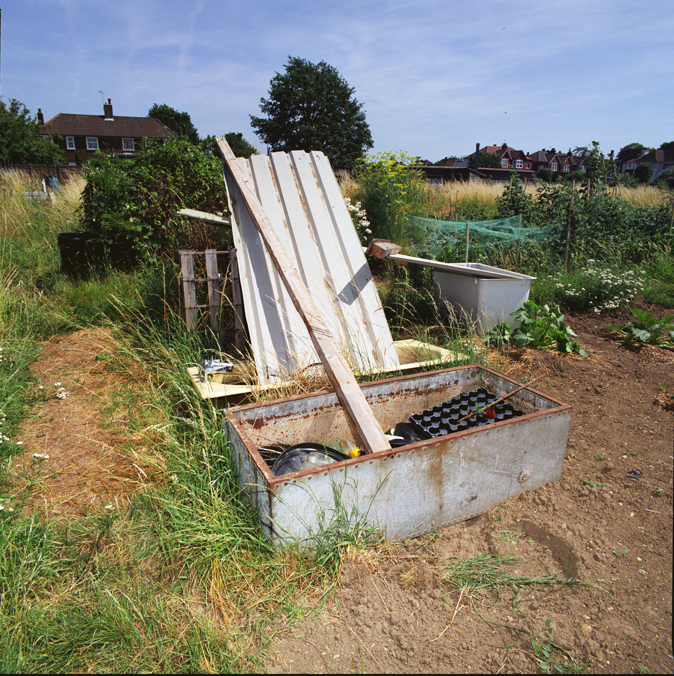 London_Portrait_Photographer_Inner_City_Landscapes_allotment+sculpture+1-7.jpg