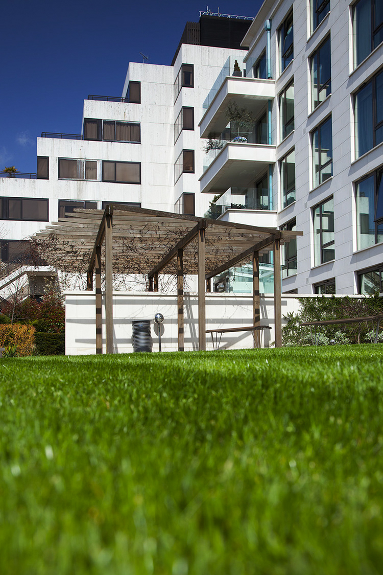 Garden lawn with apartments in the background