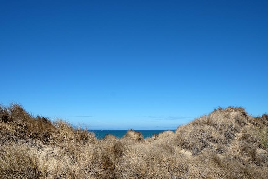 morning beach walk at Costanoa beach front