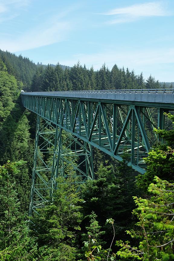 Highest bridge in OR at 345 feet. Note: tallest tree is 363 feet.