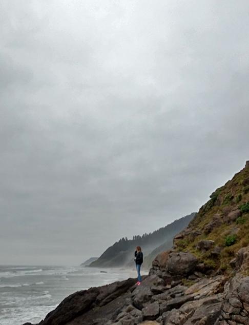 Looking north along the coast