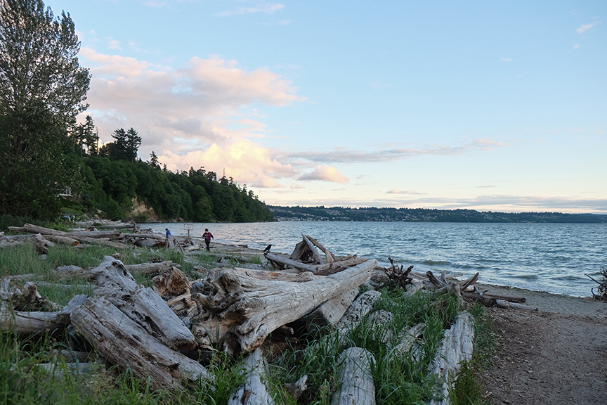 Salt Water State Park, just south of Seattle