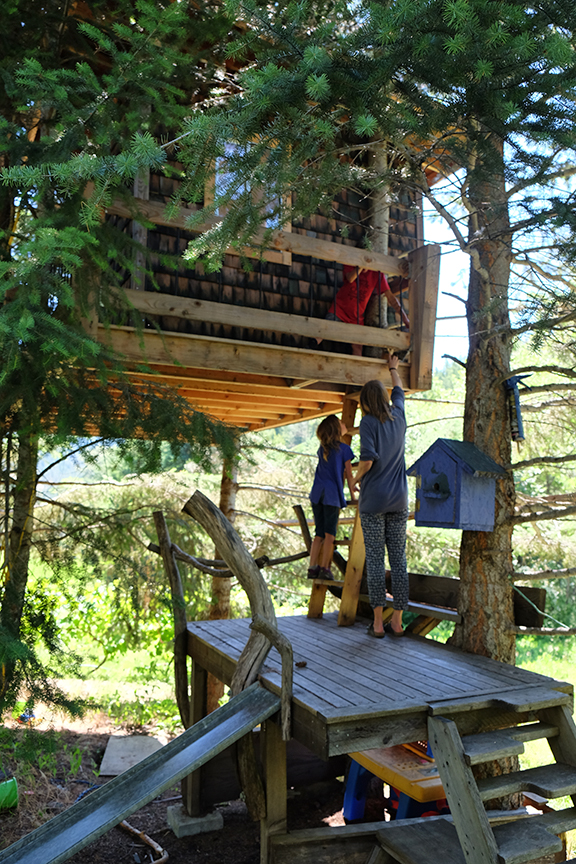 kitty in the treehouse