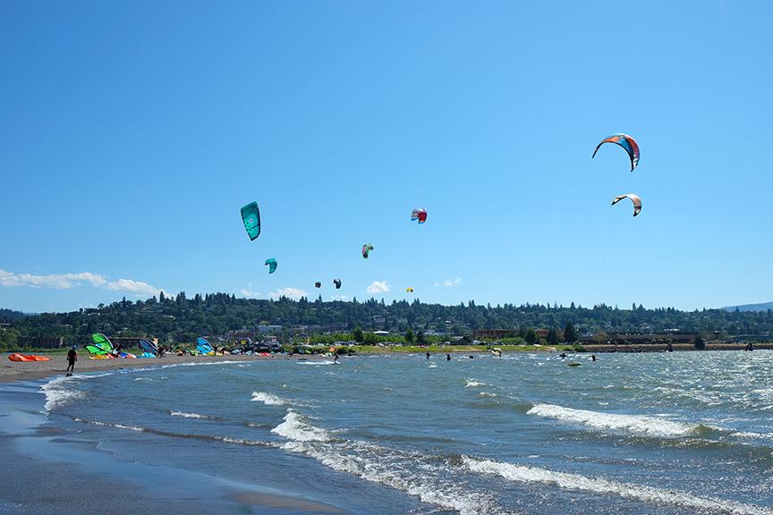 kites for days