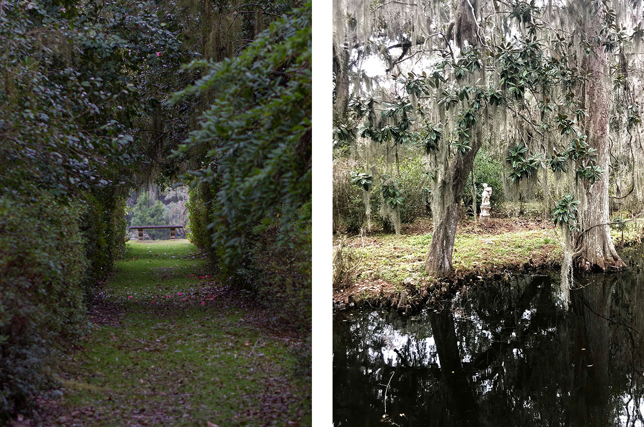 Of+Good+Stock_Charleston-magnolia-plantation.jpg