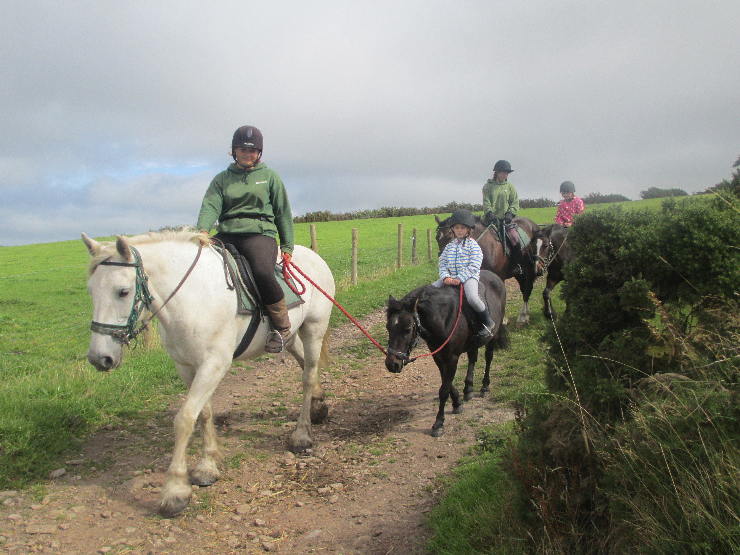 Horse Riding on Exmoor