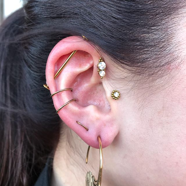 Earlier this year Lori came to me about #curatedear piercings. We discussed budget, styles she liked then I was given full range to design. Fast forward to today and Lori stopped in to have her full set of custom order jewelry installed. Fresh Forward Helix & Faux Rook piercings alongside healing helix (upper) & healed conch (lower) done by me. Other piercings not done by me but I did install all jewelry seen. This is one of my favorite projects I've done! Aside from the lobes (which are sporting gold peacock feather earrings from @tawapa ) all jewelry is from @leroifinejewelry Everything was anodized in house as well. Thanks for looking! ✌️ #tattooerypiercings #fauxrook #forwardhelix #conchpiercing #helixpiercing #traguspiercing #orbitalpiercing #daithpiercing #industrialpiercing #titaniumbodyjewerly #niobiumjewelry #legitbodyjewelry #marylandpiercer #bodypiercing #piercing #collegeparkmd