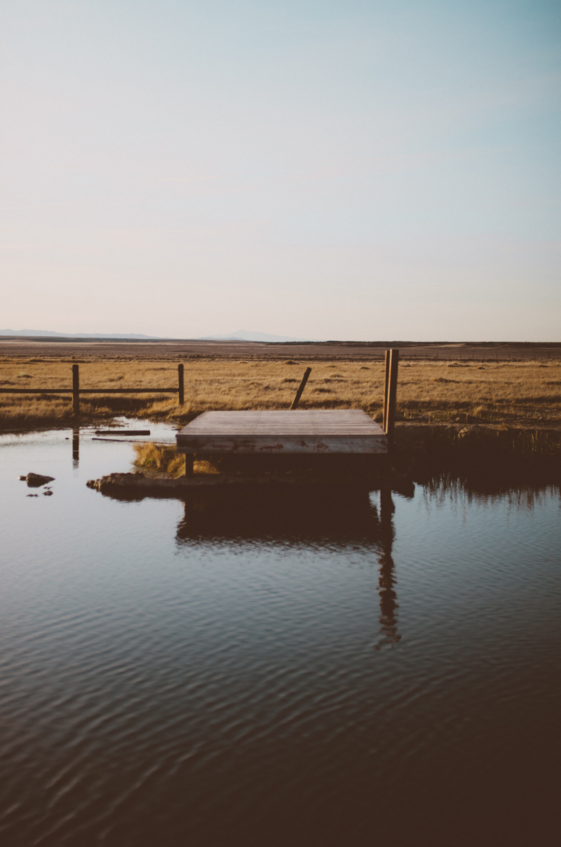 Meadow-7.jpg
