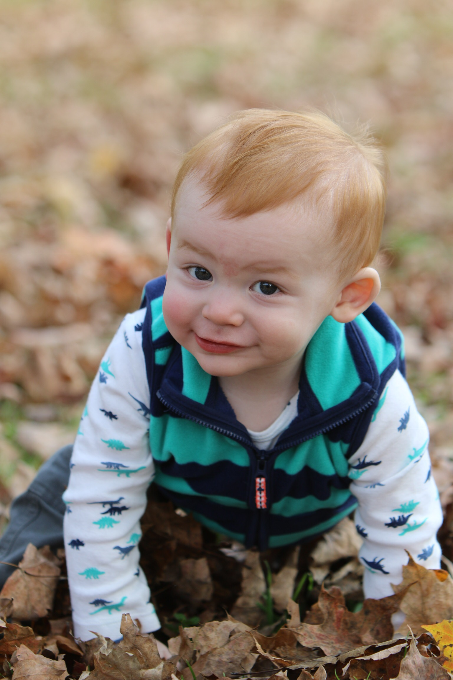 Joshua, almost 1 whole year, playing in the leaves (photo by Carla Roehner)