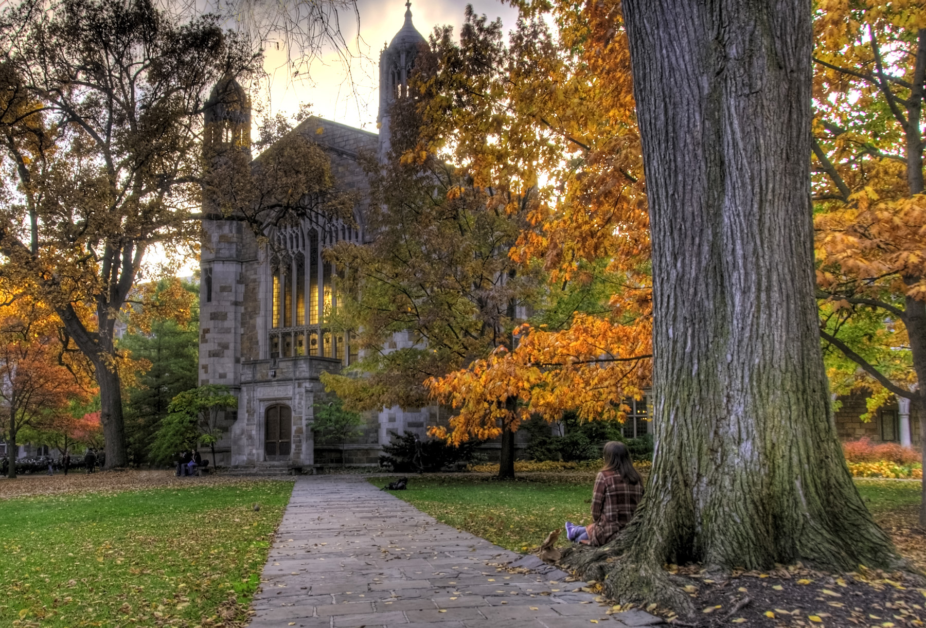 Law Quad_University of Michigan.jpg