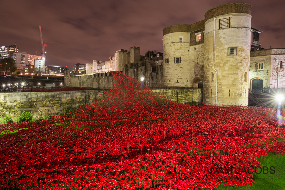 Adam Jacobs Photography Tower of London Poppies 2