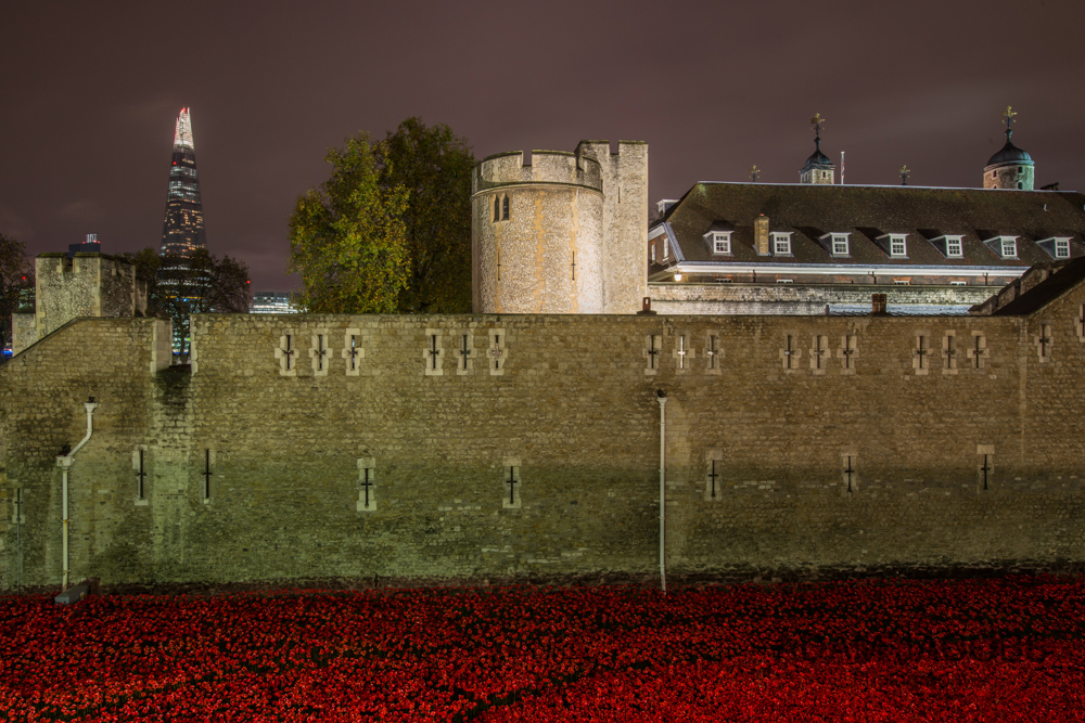 Adam Jacobs Photography Tower of London Poppies 4