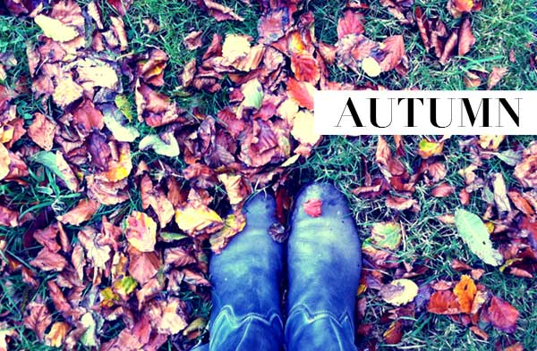 Autumn - You are crushing leaves under foot, You are clear skies, cold nights | Cloudberry Lane