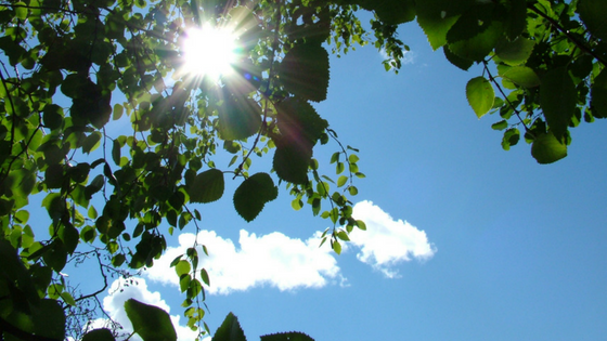 The Effects of Sunshine on Mental Health