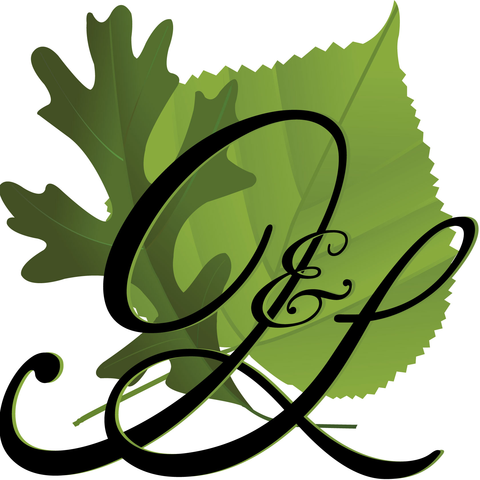 Oak and Linden Monogram/Logo