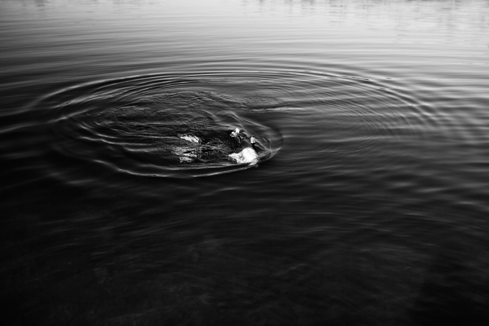 cate_wnek_splashes-10.jpg