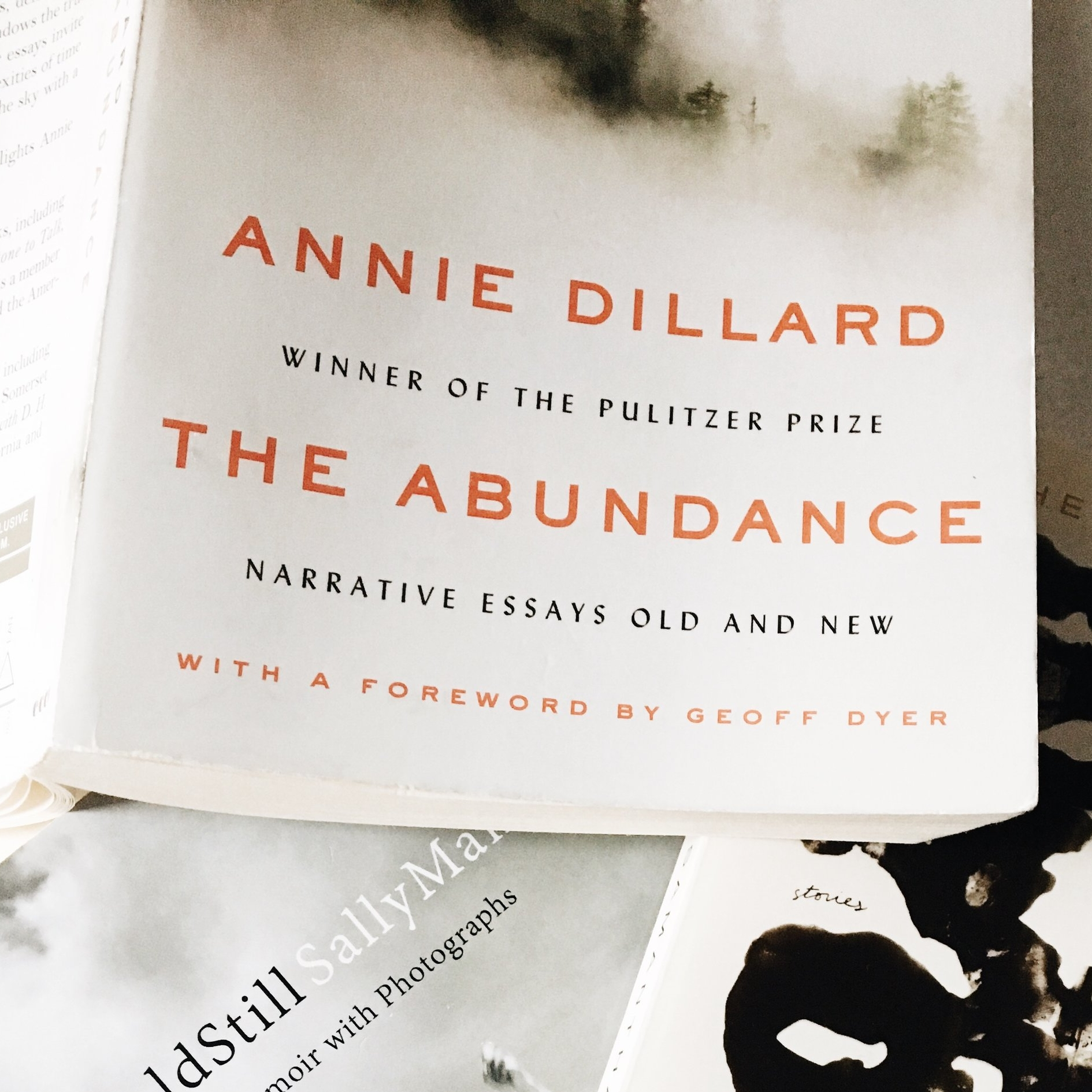 The Abundance, Annie Dillard - Some of the best prose I've had the pleasure of reading. This book reminds me of how beautiful IT all is. The intersection of the natural world and human spirit; how it all tangles together in the ether.